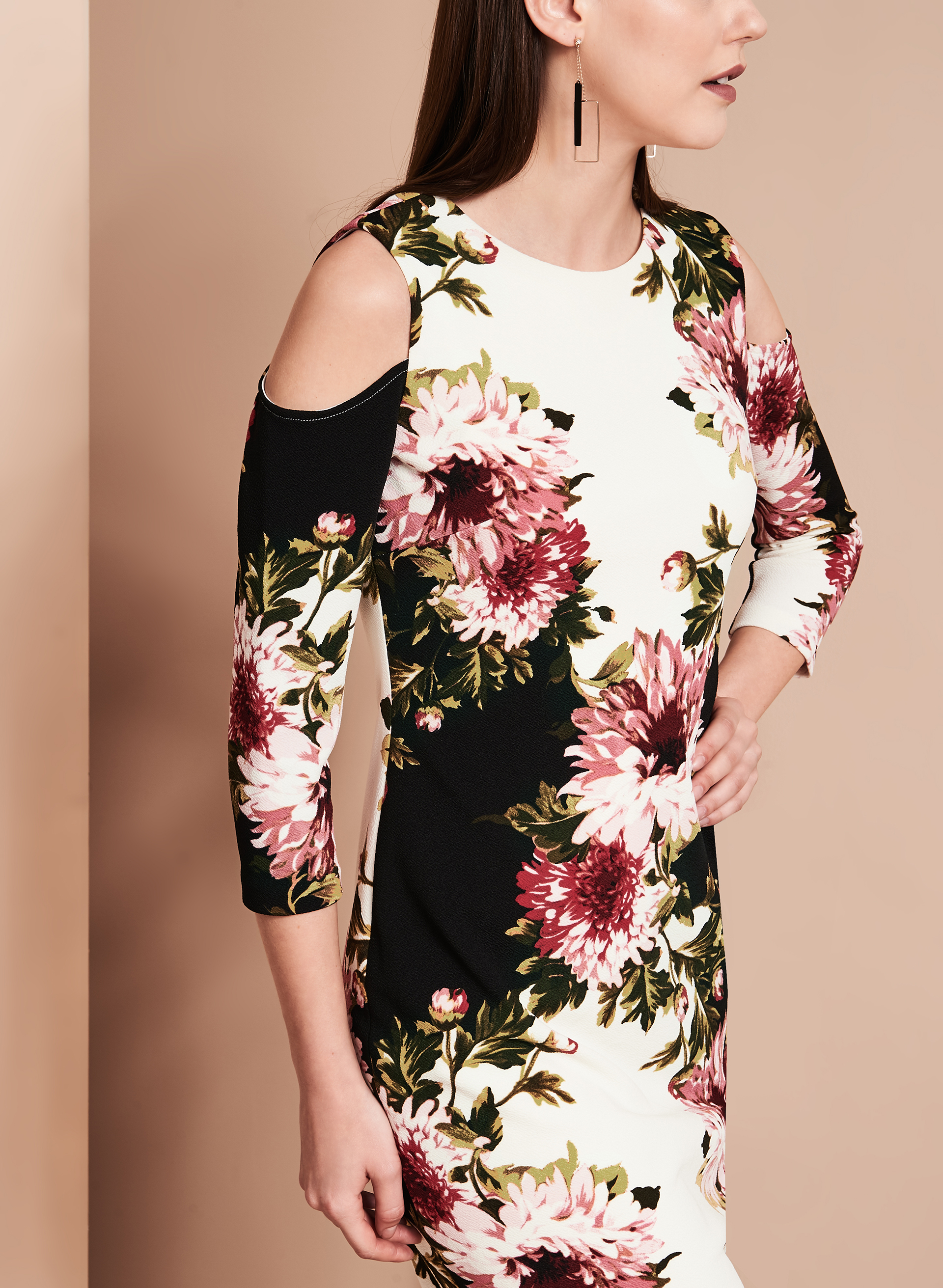 Jax Cold Shoulder Floral Print Dress Free Shipping